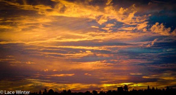 Umber Dawn